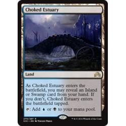 Choked Estuary SOI NM