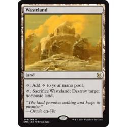 Wasteland EMA NM
