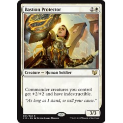 Bastion Protector C15 NM