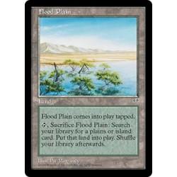 Flood Plain MIR SP
