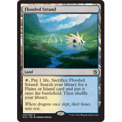 Flooded Strand KTK NM