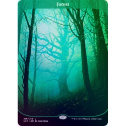 Forest FOIL UST NM
