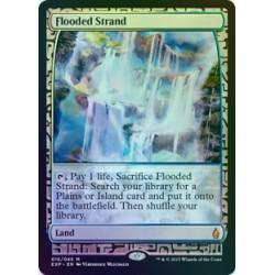Flooded Strand FOIL MPS SP+
