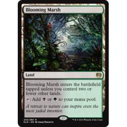 Blooming Marsh KLD NM