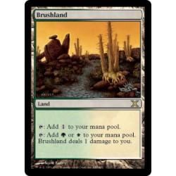 Brushland 10E NM