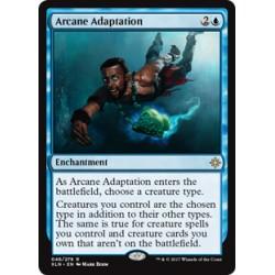Arcane Adaptation XLN SP