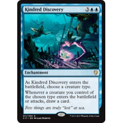 Kindred Discovery C17 NM