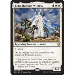 Evra, Halcyon Witness DOM NM