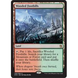 Wooded Foothills KTK NM