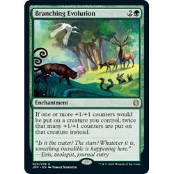Branching Evolution JMP NM