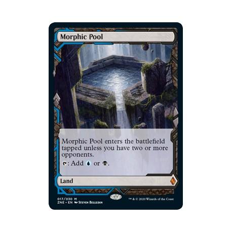 Morphic Pool ZNE NM