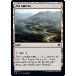 Ash Barrens C19 NM
